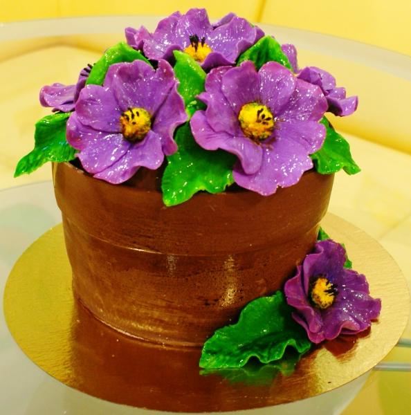 фото торт горшок с цветами
